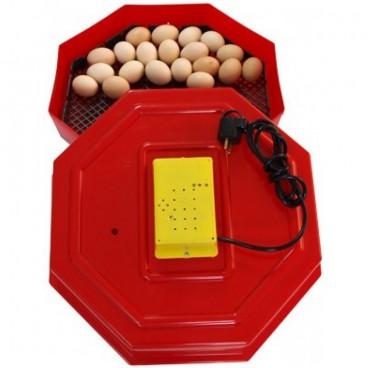 Incubator electric , ERT-MN 9050, temperatura incubare 38 grade, capacitate 60 oua gaina